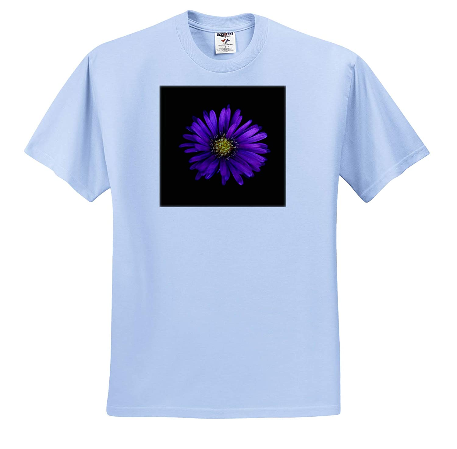 3dRose Stamp City - Adult T-Shirt XL ts/_320118 Macro Photograph of a Purple Aster on Black Background Flowers