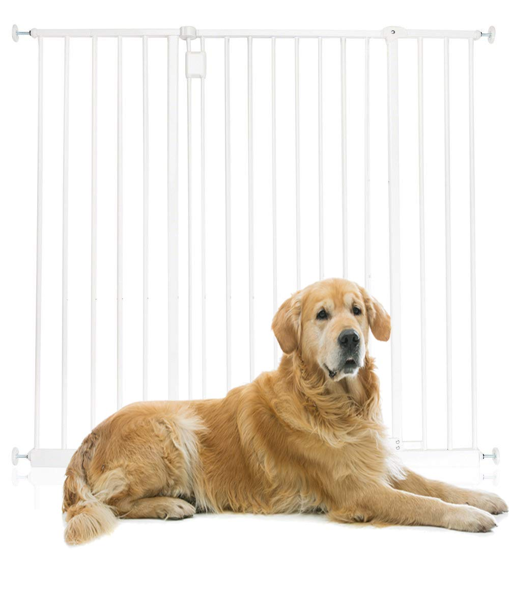 Safetots Extra Tall Hallway Pet Gate White All Widths (146.6cm - 152.6cm)