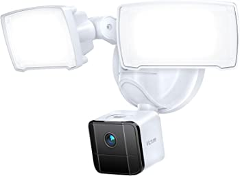 Victure Outdoor Security Camera and Floodlight