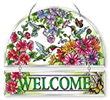 Amia Hospitality Panel Hand-Painted Hummingbird Design in Beveled Glass , 12 by 11-Inch