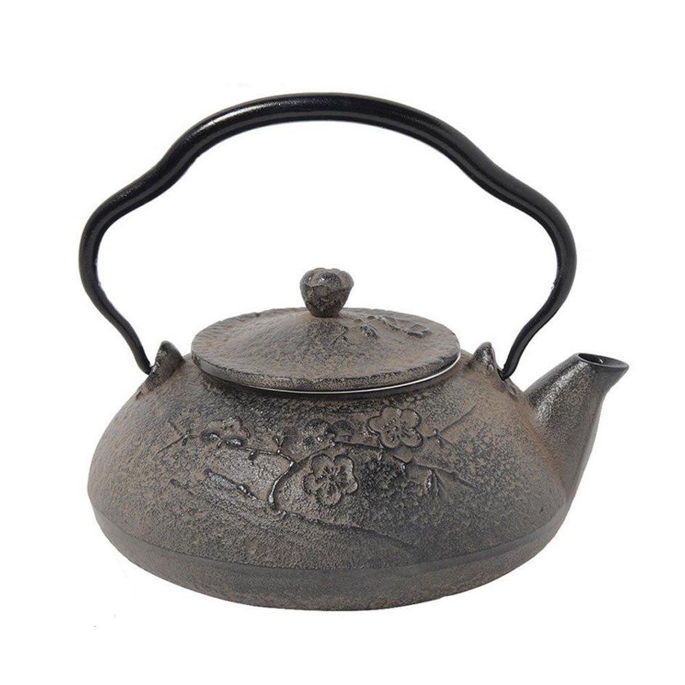 Comolife Japanese Traditional Craft 'Nambu Tekki' Tea Kettle , Pattern : Day Break , Color : Grey , CPTY : 16.9 fl oz