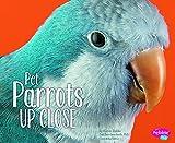 Pet Parrots Up Close (Pets Up Close)