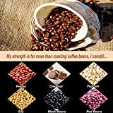Coffee Roaster Machine Coffee Bean
