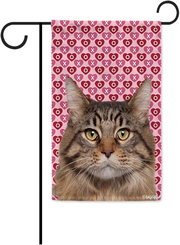 BAGEYOU Hugs and Kisses My Dog Maine Coon Valentine's Day Garden Flag Hearts Love XOXO Decor Home Banner for Outside 12.5x18 Inch Print Both Sides