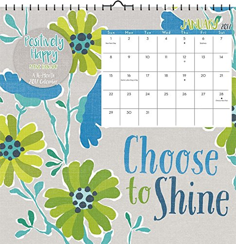 2017 Haskamp Steve Positively Happy Wall Calendar 12 X 12