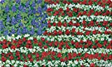 Toland Home Garden Field of Glory 18 x 30 Inch Decorative Floor Mat Flower Patriotic USA America Floral Doormat