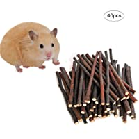 UMIWE Apple Sticks Pet Snacks, Natural Chew Sticks Small Pet Chew Toy for Guinea Pigs Chinchilla Squirrel Rabbits Parrot hamster (20 Pcs)