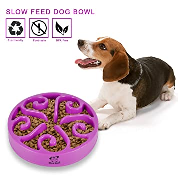 pet feeder bowl stainless fast large embossed embosed products steel brakefast feeding feed brake collections slow quality dog bowls