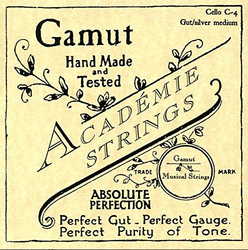 Academie Cello C-4 Gut/Silver Medium Gauge by Academie