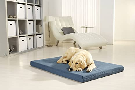 Médico Cama para Perros pulmacell Safe, 80 x 120 x 8 cm, Azul grisáceo
