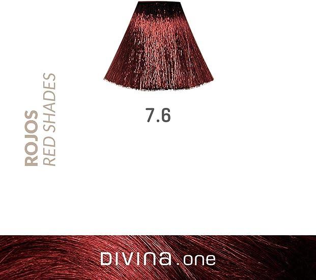 Eva Professional Hair Care Tinte Profesional Divina N.7.6 60 ...