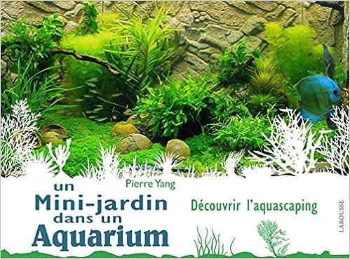 Amazon.fr - Un mini jardin dans un aquarium - Pierre Yang - Livres