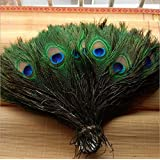 Ab World Class Peacock Pankh / Feathers Pack Of 15
