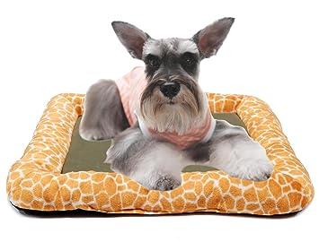 BPS® Cama para Perros, Cuna para Perro Suave Colchón Manta Sofá para Perros Mascotas Buena Calidad 61 x 52 x 7 cm BPS-2725: Amazon.es: Deportes y aire libre