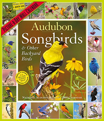 Audubon Songbirds Picture-A-Day Wall Calendar 2019 [12