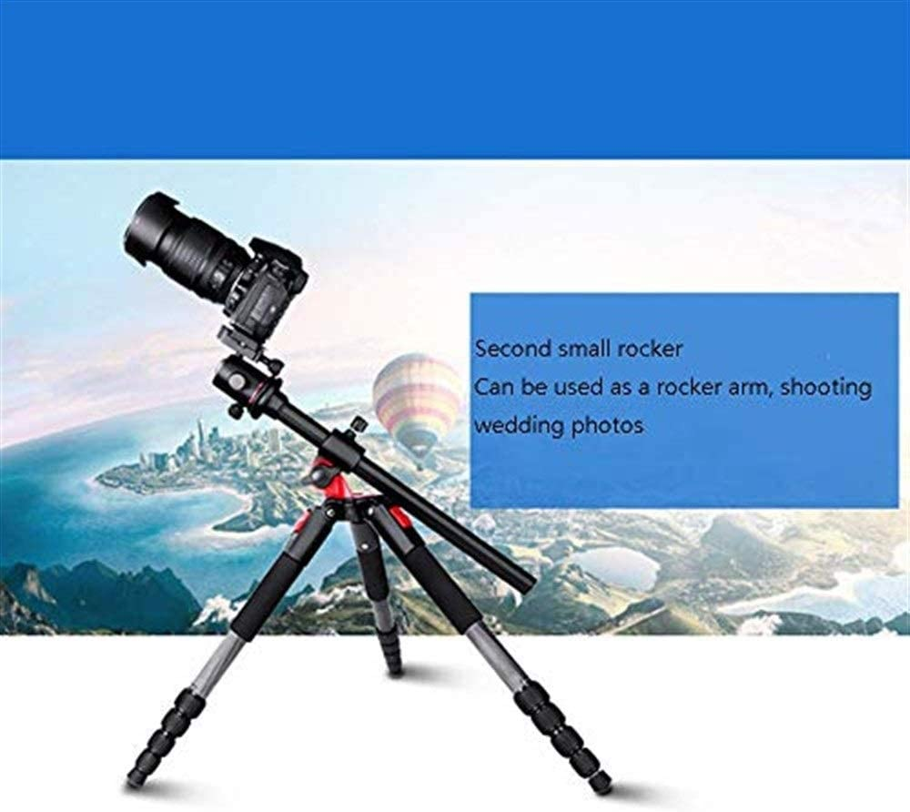 Portable Professional Travel Tripod with 360/° Panoramic Ball Head Maximum Load 10KG EPCMTTC Camera Tripod Tabletop Tripod Suitable for Digital SLR Cameras Travel Tripod
