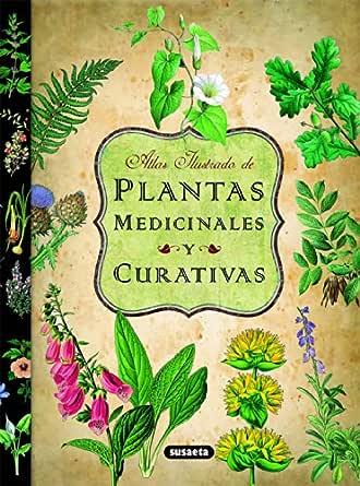 Plantas Medicinales Y Curativas (Atlas Ilustrado) eBook