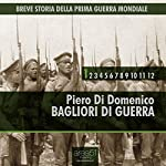 Breve storia della Prima Guerra Mondiale, Vol.1 [Short History of WWI, Vol. 1]: Bagliori di guerra [Flashes of War] | Piero Di Domenico