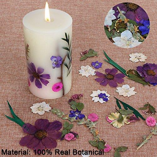 LOHOTEK Scented Candles White Tea Candle Soy Wax, Botanical Pillar Candles by LOHOTEK (Image #1)