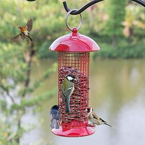 Zhyaj Comederos para Pájaros A Prueba De Ardillas, Colgantes Comedero para Pájaros Salvajes para Pequeños Pájaros Jardín Al Aire Libre - Metal,Rojo,10 * 10 * 22cm: Amazon.es: Deportes y aire libre