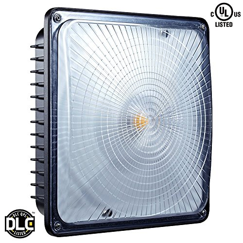 Leonlite LED Canopy Light 65W (300W-350W MH/HID Replacement) 5000K Daylight 6700 Lumens 9.5  x 9.5  Floodlight UL Listed for Area Lighting Wet Location ...  sc 1 st  Amazon.com & Canopy LED Lights: Amazon.com