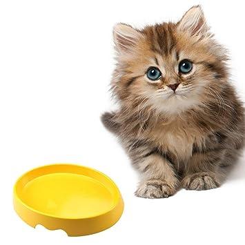 AOLVO - Plato para gatos, cuenco para comida, plato ancho para mascotas, plato