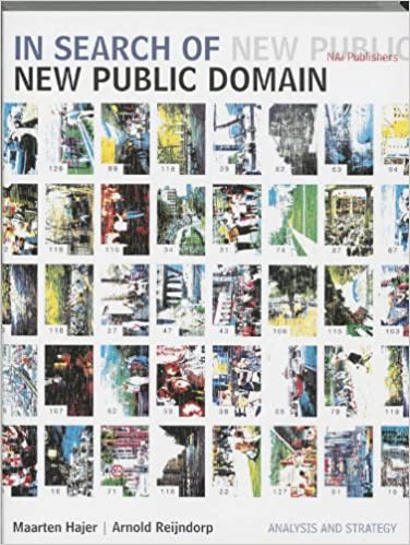 In Search Of New Public Domainysis And Strategy Maarten A Hajer  Books Amazon Ca