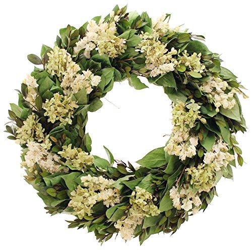 Floral Treasure Kings Garden Hydrangea 18