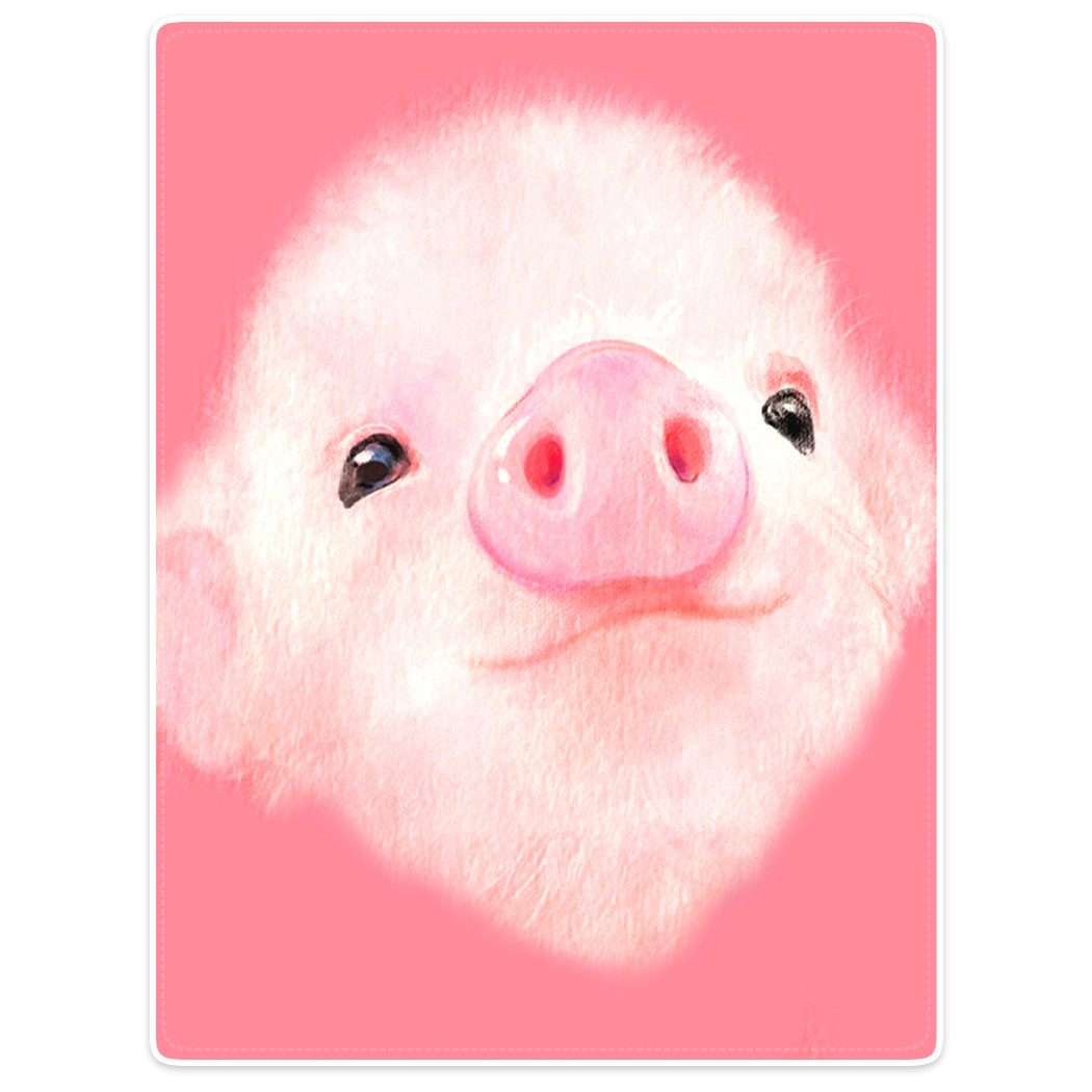 TSlook Super Soft Warm Blankets Sofa Bed Throw Cute Pink Pig Big Nose Girl 60'' x 80''