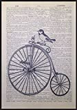 Vintage Bird Penny Farthing Bike Bicycle Dictionary Page Print Picture Wall Art by Parksmoonprints