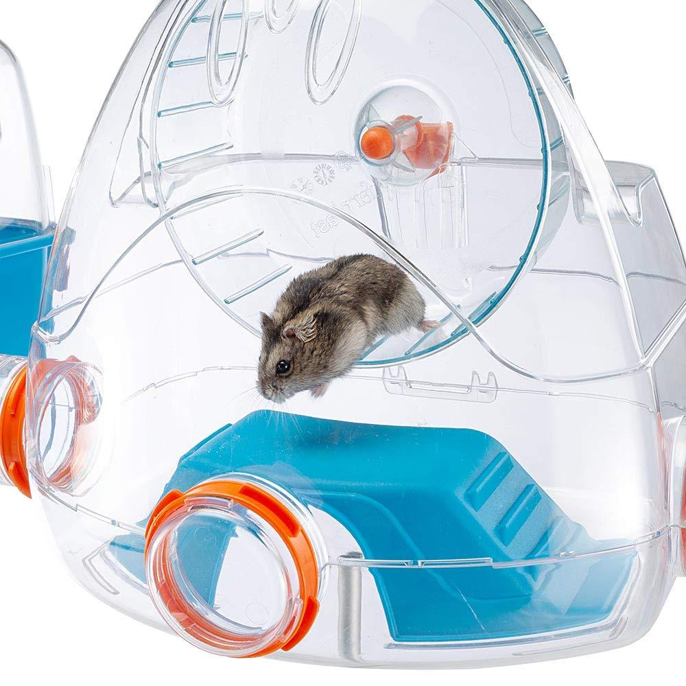 Ferplast Jaula para hámsteres Combi 2, para pequeños roedores ...
