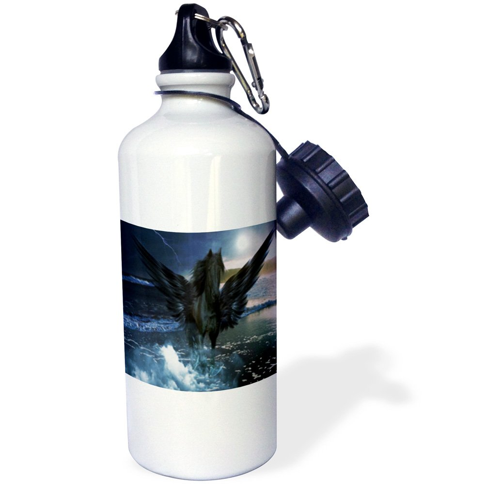 3dRose wb/_214477/_1 Print of Swimming Pig In Staniel Cay Bahamas Sports Water Bottle 21 oz Multicolored
