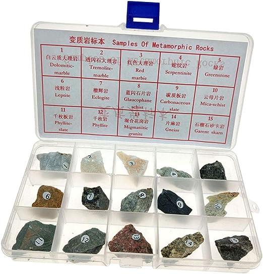 Baoblaze Colección de Roca Metamórfica Science con Caja de Colección, de Roca Natural para Estudiar Geología y Ciencia de Tierra: Amazon.es: Juguetes y juegos