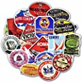 25 Different Reproduction Travel & Hotel Luggage Labels (Decal Stickers) Retro Vintage
