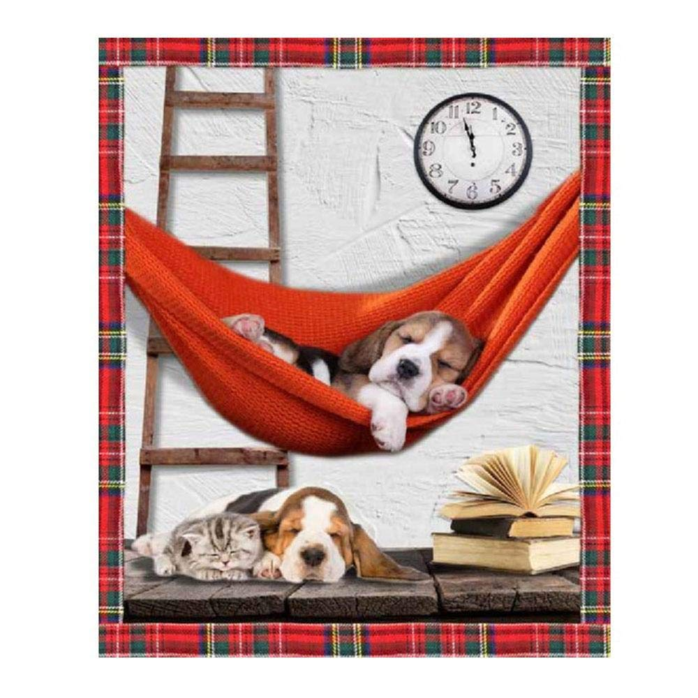 GBiancheria Plaid con Stampa Digitale E Retro AGNELLATO Dis Sweet Sleep Mis.130x160 Idea Regalo
