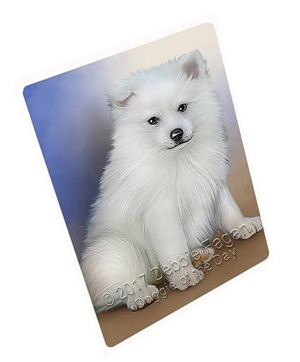 Amazon.com  American Eskimo Dog Blanket BLNKT50565 (50x60 Fleece ... e6bab8b48