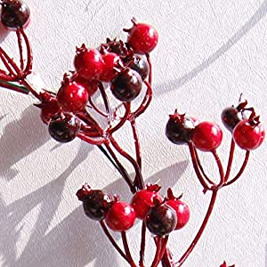 Fake Flower Christmas Wreaths Artificial Berries Natural Pine Nuts Combination Garlands Christmas Decoration for Home Party Outdoor 45Cm,45Cm Red 4
