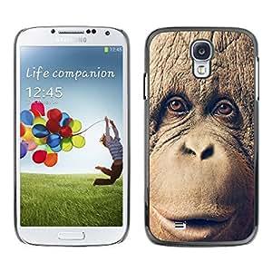 Stuss Case / Funda Carcasa protectora - Chimpancé del chimpancé del MONO - Samsung Galaxy S4