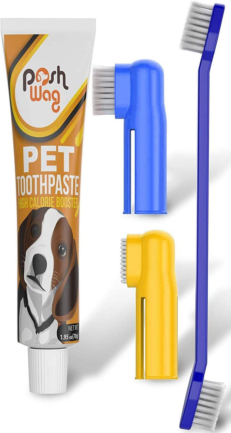 7 best dog toothbrush 2