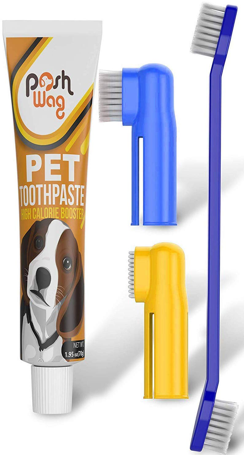 Dog Toothpaste and Toothbrush Set [REMOVES FOOD DEBRIS] Double Sided with Long Curved Handle [SUPER EASY CLEANING] - Best Soft Silicone Pet Toothbrush for Cats And Dogs [EXPANDABLE FINGER ENTRY] - Sma by Ortz