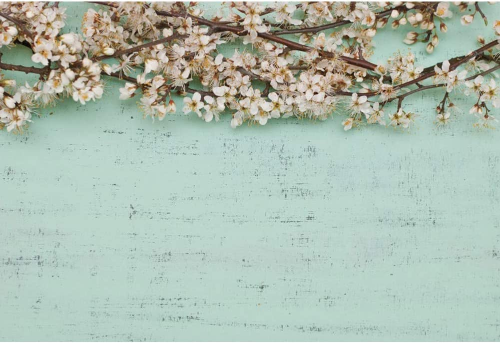 YongFoto 12x8ft Spring Flowers Blossom Photography Background Cherry Flowers Sakura Flowring Light Blue Wall Floral Photo Backdrop Still Life Photoshoot Props Party Decor Banner Portrait Photobooth