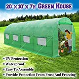 BenefitUSA Large Green House Walk In Garden Greenhouse Outdoor Canopy Gazebo Plant House