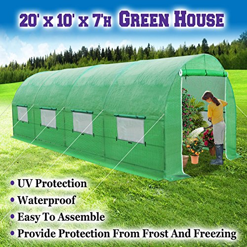 BenefitUSA Large Green House Walk In Garden Greenhouse Outdoor Canopy Gazebo Plant House (20'X10'X7′, Green)