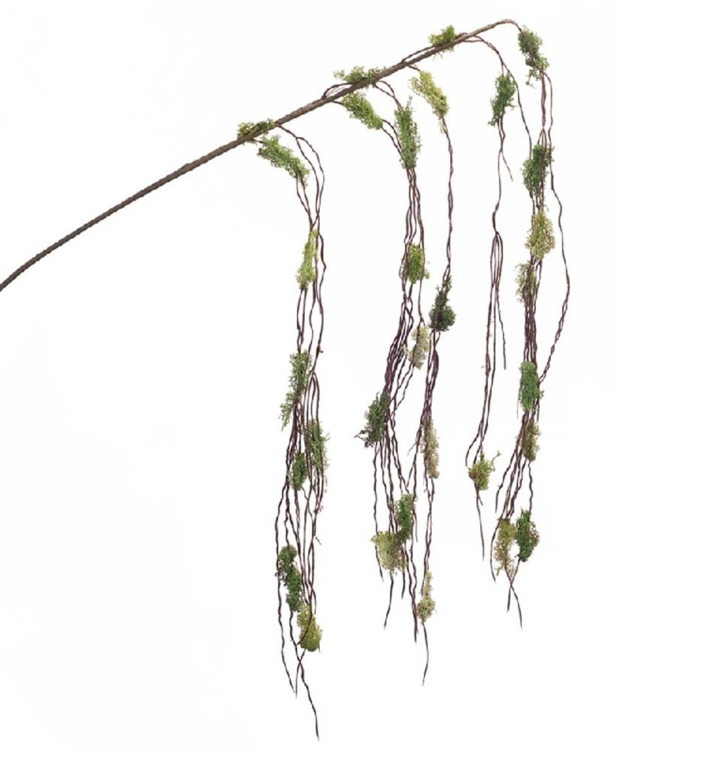 Club Pack of 12 Decorative and Forest Inspired Moss Hanging Branches 56''