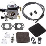 HIPA Carburateur avec Filtre à Air et Tuyau d'Essence pour Débroussailleuse STIHL FC 72 FS 72 FS 74 FS 76 Weedeater