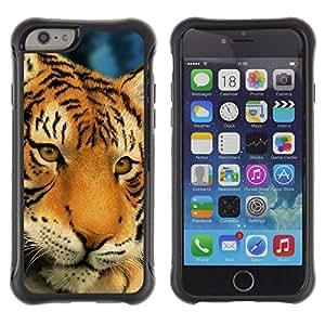 iKiki Tech / Estuche rígido - Tiger Sad Sleepy Tired Big Feline Cat - Apple iPhone 6