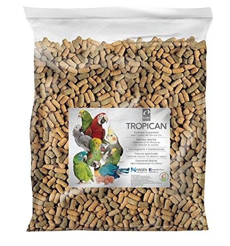 Tropican Lifetime Formula Maintenance Parrot Food Sticks, 20-Pound by Hari