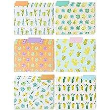File Folders – 12-Pack Decorative File Folders, 6 Beautiful Succulent Plant Colorful File Folders, Designer File Folders - Letter Size 1/3 Cut 1/2 Inch Top Memory Tab, 11.5 x 9 Inches