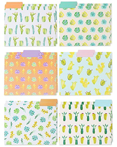 File Folders  12Pack Decorative File Folders 6 Beautiful Succulent Plant Colorful File Folders Designer File Folders  Letter Size 1/3 Cut 1/2 Inch Top Memory Tab 115 x 9 Inches