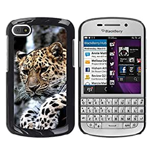 Hot Style Cell Phone PC Hard Case Cover // M00108254 Leopard Animal Cat Cheetah Amur Zoo // BlackBerry Q10